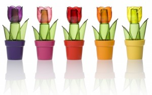 Poza Solnita Tulipa - variante culori